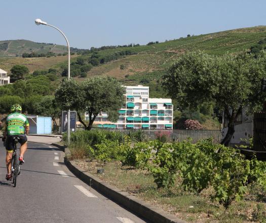 Cyclosportif route des cols - Banyuls
